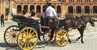Paseo en coche de caballos por Sevilla