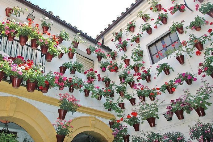 Excursión a Córdoba desde Sevilla