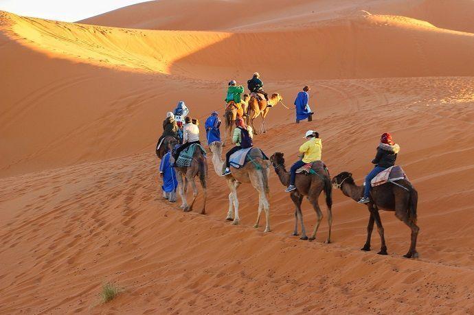 Caravana en camello. Dubái.