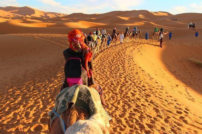 Contratar Tour en camello. Dubai.