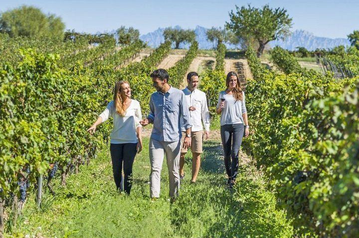 Ruta del cava y el vino por las bodegas del Penedés. Reservar tour.