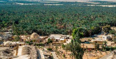Excursión al oasis de Fayoum