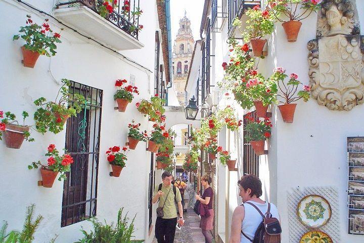 Tour nocturno por Córdoba