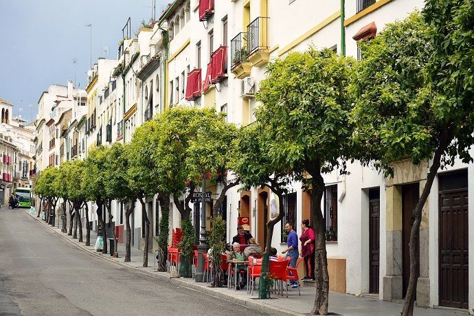 Visitas guiadas para visitar Córdoba.