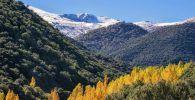 Excursión Sierra Nevada