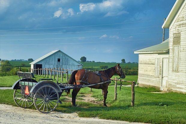 Excursión a Filadelfia. Amish.