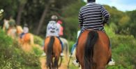 Paseo a caballo Montserrat