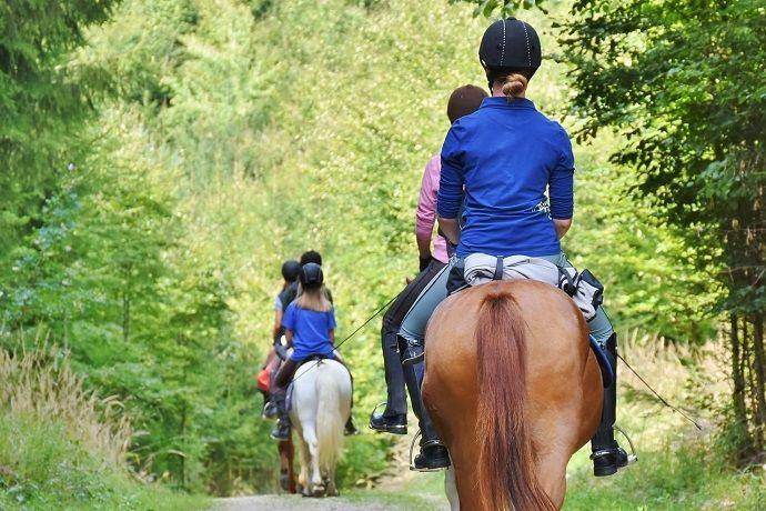 Paseo caballo Montserrat